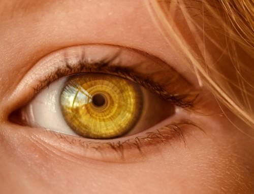 115 – El Corona Virus ha Venido a Ralentizar Nuestra Sociedad Desbordada